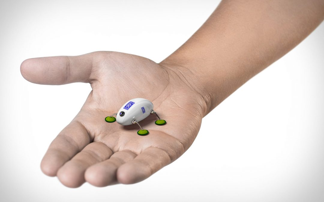 How small will robots get?